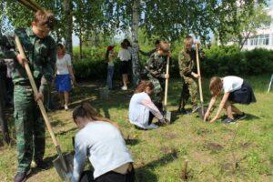 Продолжается осенний этап акции  «Посади дерево и сохрани его»