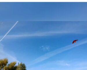 Поздравляем  победителей Республиканского заочного конкурса воздушных змей   «Полет в облаках»